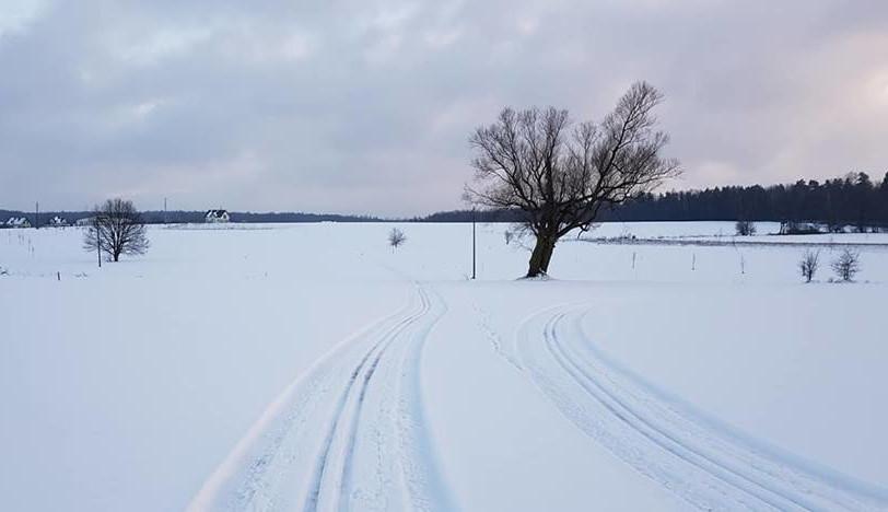 Trasy biegowe w Mokrem już czynne