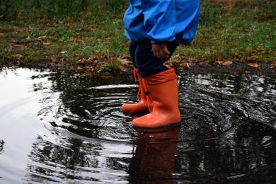 Sprawdź prognozę pogody w Mikołowie na weekend i kolejne dni