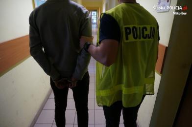 Mikołów: Policjanci zatrzymali wandali, którzy zniszczyli lusterka w samochodach