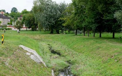 Tereny zielone w pobliżu Starego Kościoła zostaną zrewitalizowane?