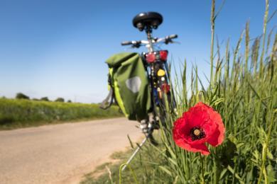 Jak zabezpieczyć swój rower przed kradzieżą?