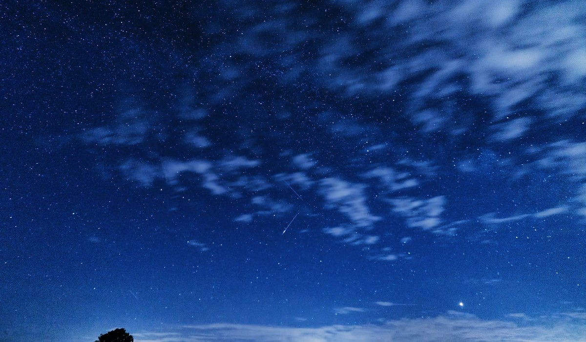 Noc Perseidów w Śląskim Ogrodzie Botanicznym. Magiczna noc w ŚOB już 7 sierpnia