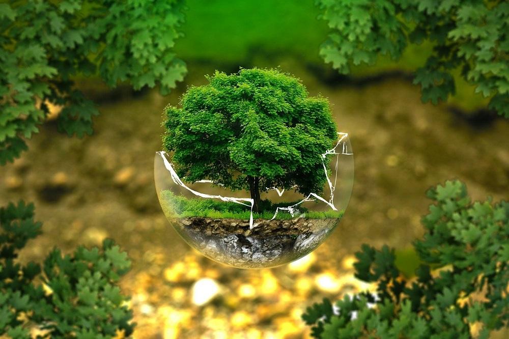 Mikołów z najwyższym dofinansowaniem w kraju. 10 milionów na inwestycje ekologiczne