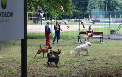 Nowy wybieg dla psów już otwarty. Miejsce zabaw dla psiaków powstało za basenem