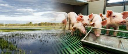 Inwestycje zapobiegające zniszczeniu potencjału produkcji rolnej – wkrótce rusza nabór