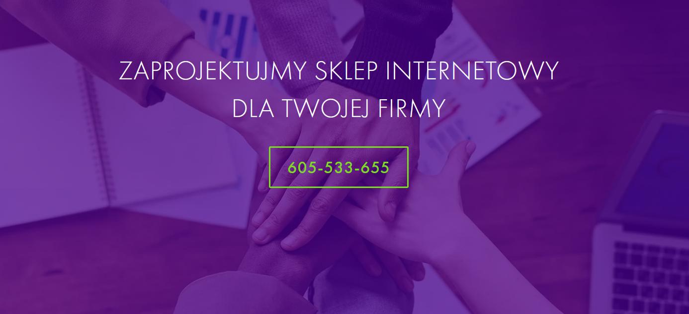 Jakie elementy powinien zawierać sklep internetowy dla firmy z Mikołowa?